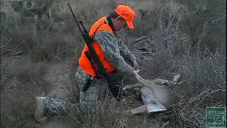 Avoid these Common Deer Season Hunting Violations