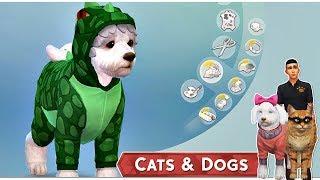 Az Állati Meló 🐕  - Karakterkészítés, beköltözés! - 1. rész (Cats and Dogs) - dooclip.me