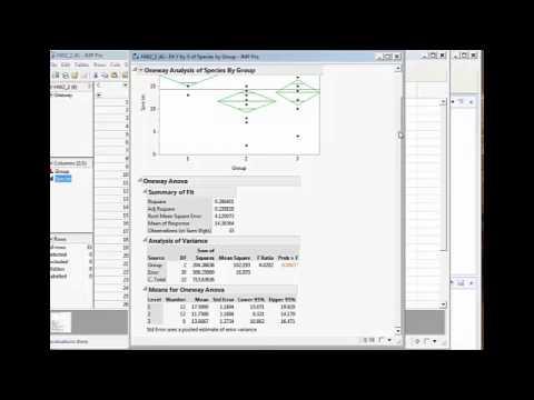 Calculating One Way ANOVA on JMP