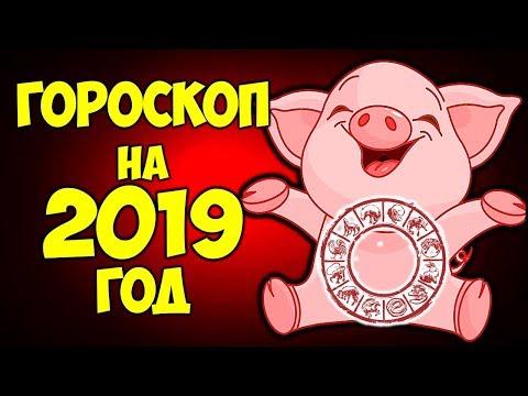 ТОЧНЫЙ ГОРОСКОП НА 2019 ГОД ПО ЗНАКАМ ЗОДИАКА🐷