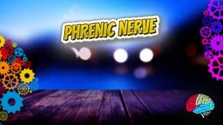 Phrenic nerve - Know It ALL 🔊✅