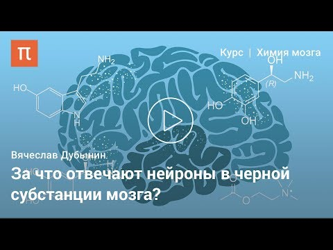 Дофамин — Вячеслав Дубынин видео