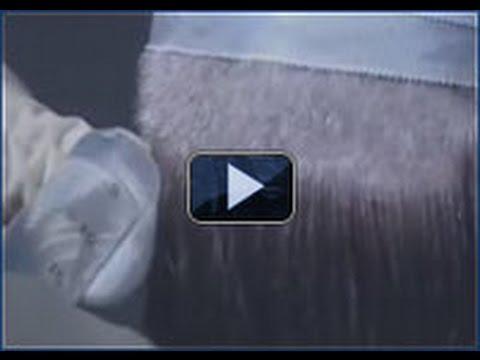 Das Kastoröl für das Haar von der Schuppenflechte