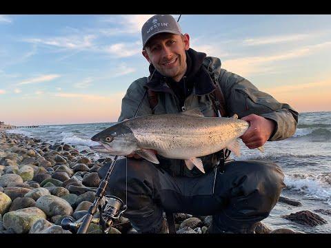 W10 – Fisk & Fri på kysttur med Westin