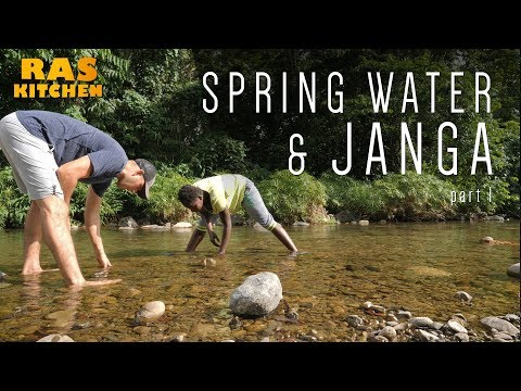 Spring Water Mission & Janga Catching with Shannel!