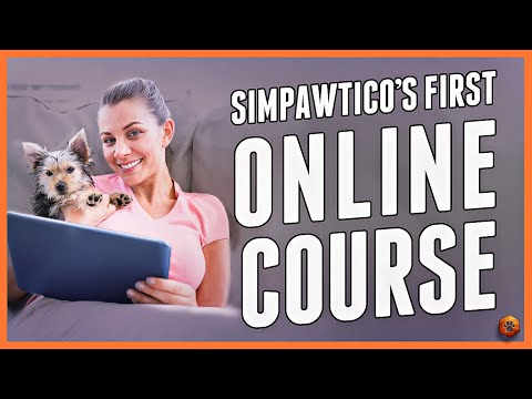 This Online Dog Training Course Will Blow Your Mind! - YouTube