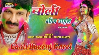 CHOLI BHEENJ GAEEL - Holi Special 2016 [ Audio Songs Jukebox ] - Manoj Tiwari, Tripti Shaqya