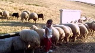 demircili köyü  agacören by bahtiyar