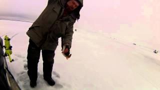 Ловля окуня в котлах на рыбинке