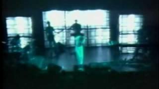 Devo - S.I.B. (Swelling Itching Brain) (Live) 1980