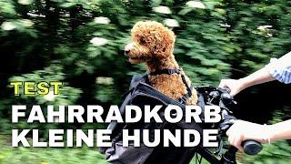 [Test] Fahrradkorb für KLEINE Hunde - Fahrradtour mit Zwergpudel Moki - Montage-Anleitung
