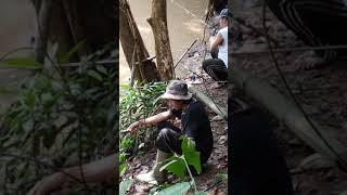 preview picture of video 'Mancing ikan baung babon di way besai'