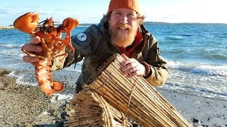 Catch and Cook a Lobster In a Primitive Fish Trap (87 days episode 23)