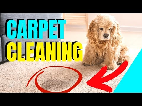 Correcting Browning, Wicking and Re-Occurring spots from carpet cleaning