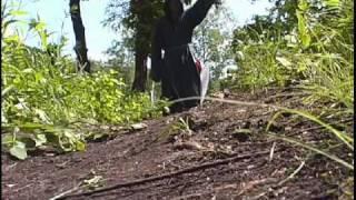 Волколак-Слава Яриле