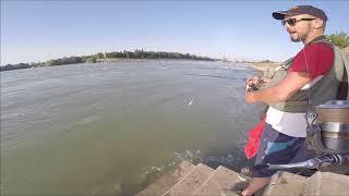 Краснодар рыбалка в черте города