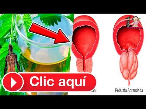 Masaje de próstata beneficios y los daños eróticos