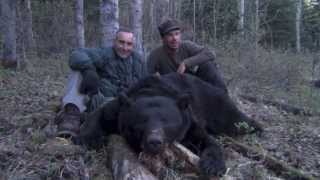 238 Yard Shot On This Trophy Black Bear Spot & Stalk Hunting with Willow Creek Outfitters