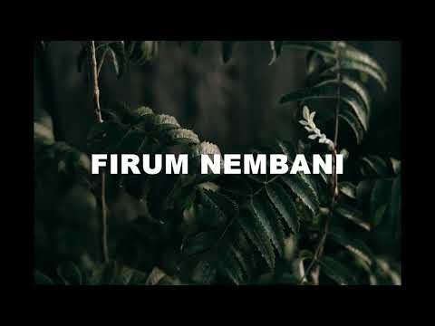 Lagu daerah waropen     firum nembani