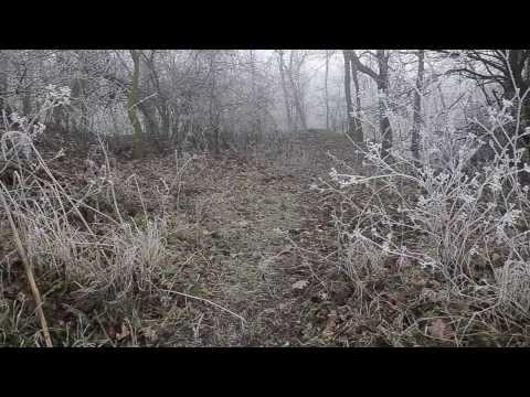 Zenový Čaj - Zen Tea - Cold Mist