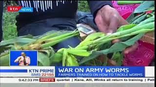 County governments working together with National government to deal with army worms