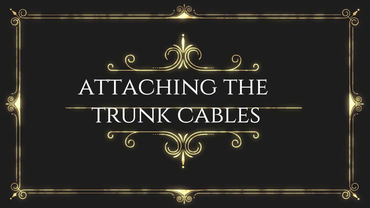 Modular Trunk Cables