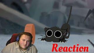 Such a cute video!!! : Kitbull | Pixar SparkShorts Reaction