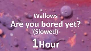Wallows - are you bored yet? (Slowed) ft Clairo [1 Hour] Loop