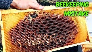 Bad Beekeeping Problem