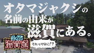 オタマジャクシの名前の由来が滋賀にある?:クイズ滋賀道