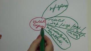 Смотреть онлайн Урок татарского языка про падежи на русском языке