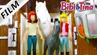 BIBI & TINA Sabrinas Fohlen Film deutsch | Trächtiges Pferd auf dem Martinshof | Fohlen Geburt Craze