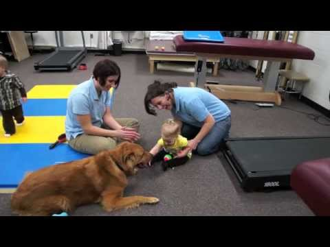 The Benefits of Animal-Assisted Therapy