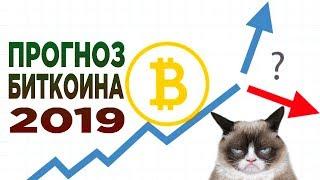 Курс биткоина: прогноз на 2019. Крах BTC или рост до луны? Последние новости