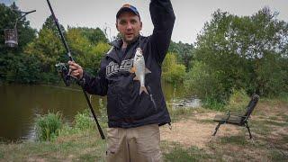 Новое в рыбы ловля на реке тетерев