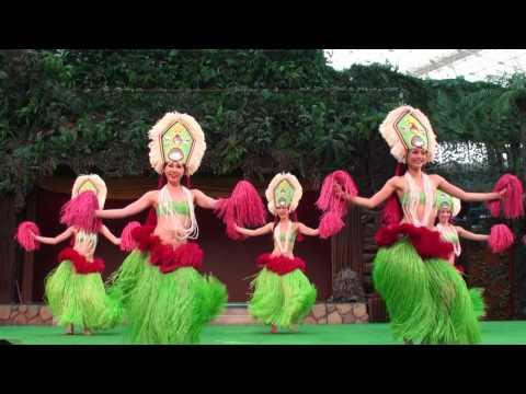 A Arrebatadora Dança da Polinésia