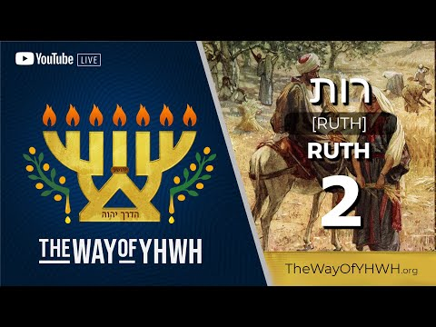 Ruth 2 [רות]  (Pillar עַמּוּד) . The Two Pillars on The Temple