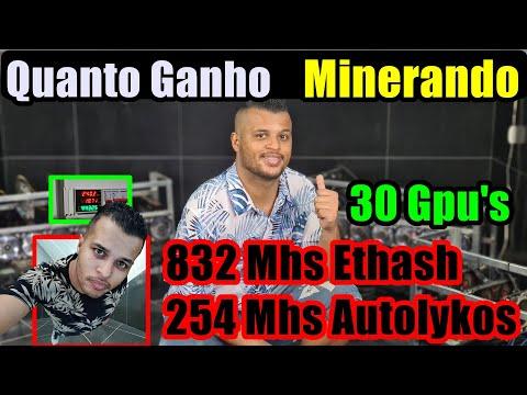 Quanto Ganho Minerando,  What To Mine MEntiu ?