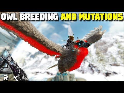 SNOW OWL BREEDING AND MUTATIONS | ARK:EXTINCTION [EP21]