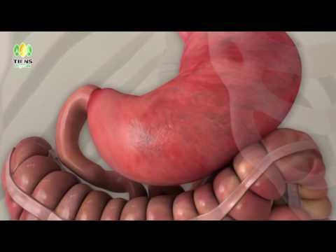 Menurunkan Berat Badan 10 kg per bulan setelah melahirkan
