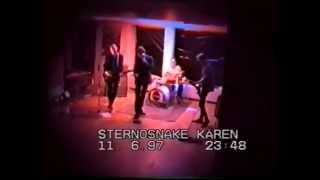 Sternosnake: The Snake