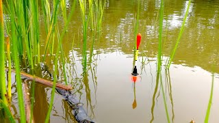 Спрей крючок для рыбалки своими руками