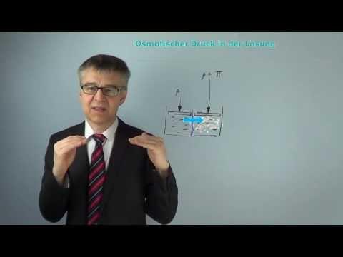 Teufelskreis der essentiellen Hypertonie