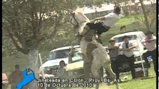 preview picture of video 'Jineteadas en Colón, Prov. de Buenos Aires (Octubre 2010)'