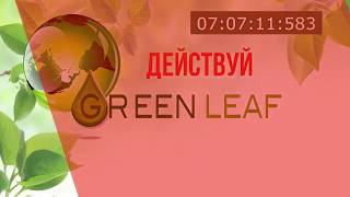 Короткий маркетинг Greenleaf/зеленый лист