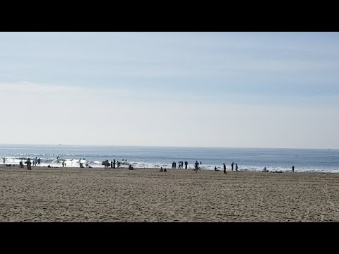 Venice Beach Nice Day 2018