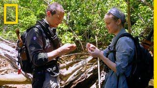 <span class='sharedVideoEp'>001</span> Brie Larson竟然吃下一隻獨角仙 Brie Larson Eats a Rhino Beetle