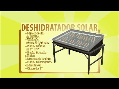 DESHIDRATADOR SOLAR DE FRUTAS Y VERDURAS