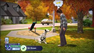 videó The Sims 3: Pets