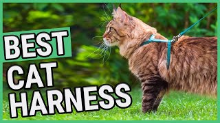 Best Cat Harness | TOP 7 Cat Harnesses (2020) 🐱 ✅